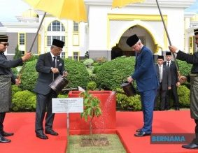 Tanam Pokok Cempaka Kuning Simbolik Mesyuarat Majlis Raja-Raja ke-256